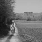Dordogne2010-14